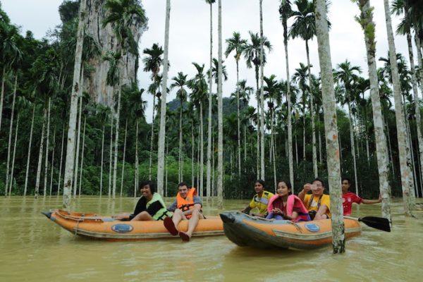 Khao Sok Canoe palm trees