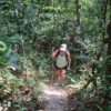 Guest hiking during Khao Sok Jungle Trek