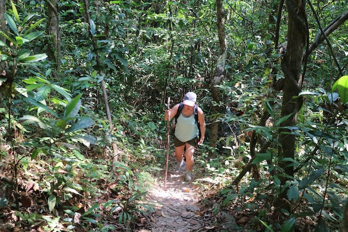 Fantastic Anurak Lodge Jungle Trek at Khao Sok