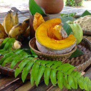 Food for Somboon Khao Sok Elephant Experience