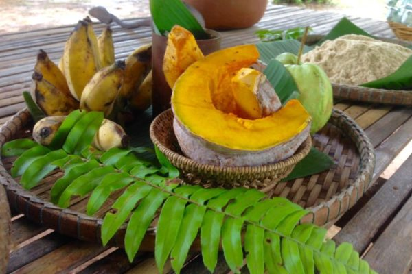 Food for Somboon Khao Sok Elephant Experience
