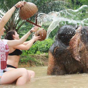 Showering Somboon Khao Sok Elephant Experience