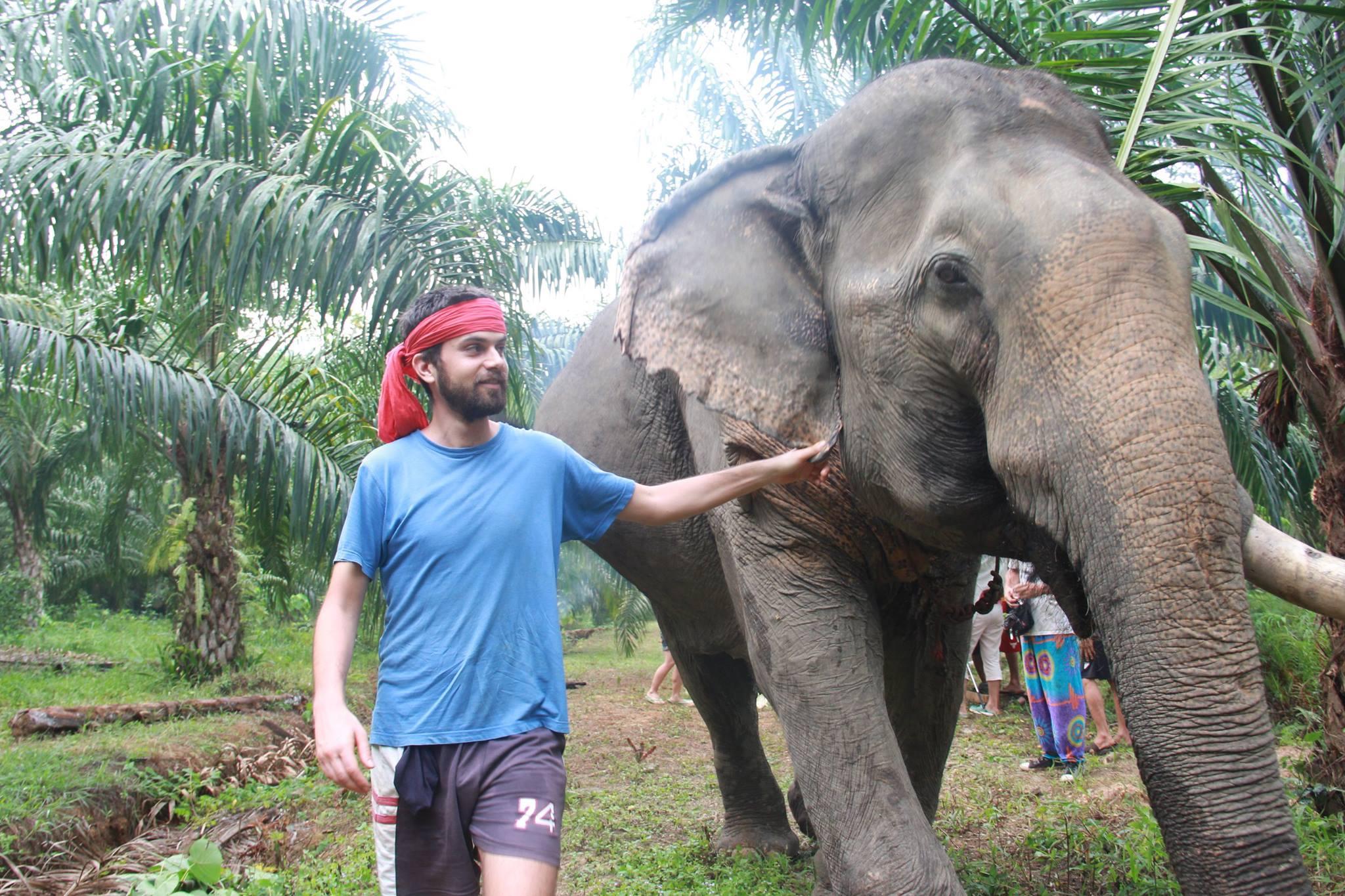 Meeting Somboon Anurak Elephant Experience