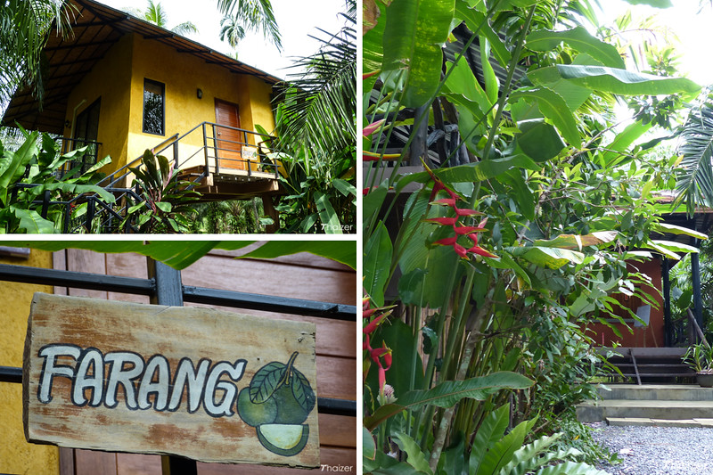 Pictures of Anurak Lodge