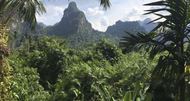 View of Khao Sok Limestone mountains