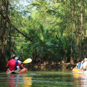 Khao Sok Jungle & Lake Package