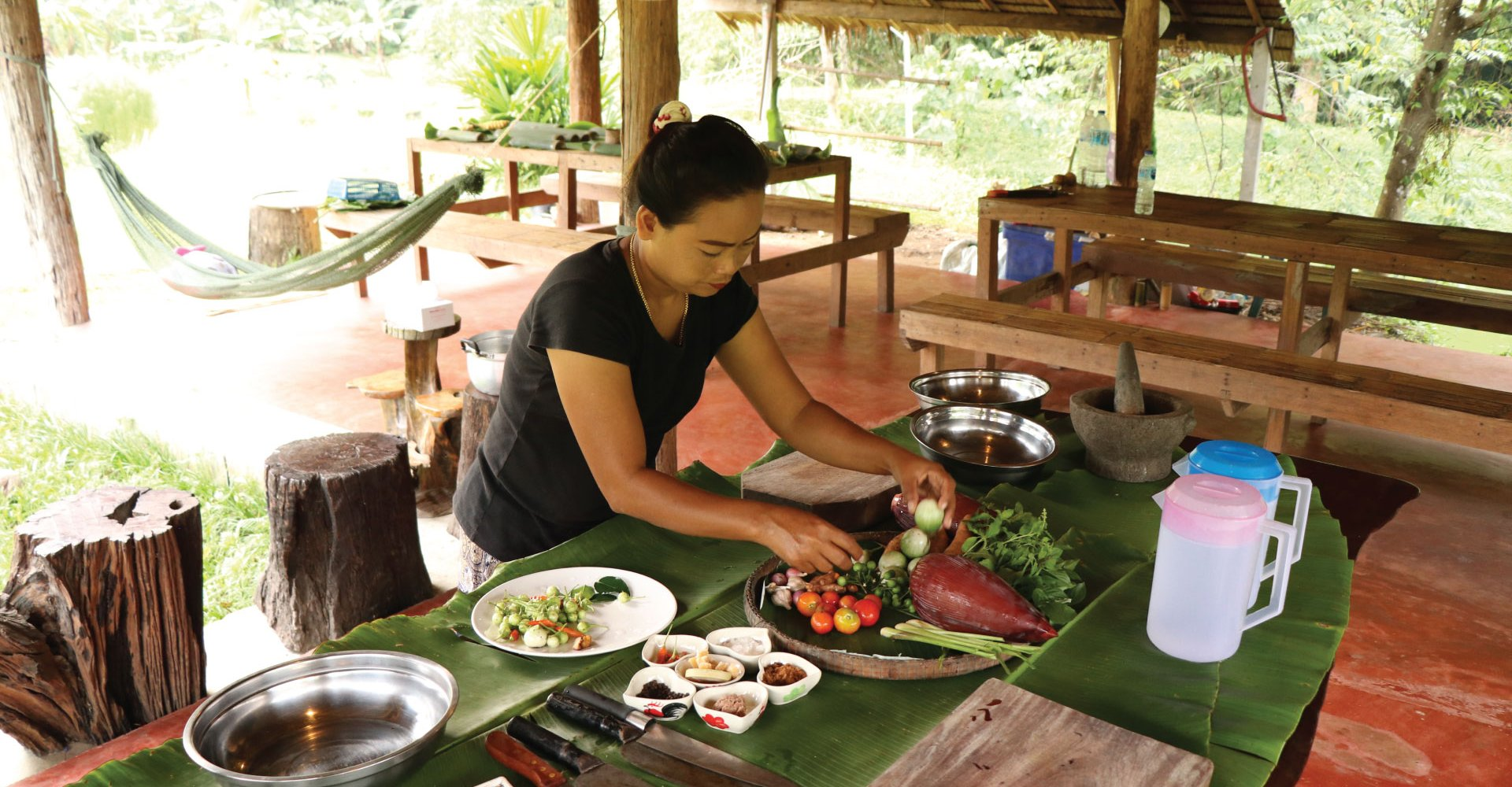 Organic Farm Cooking Experience