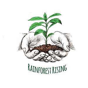 Rainforest-raising