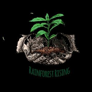 Rainforest-raising