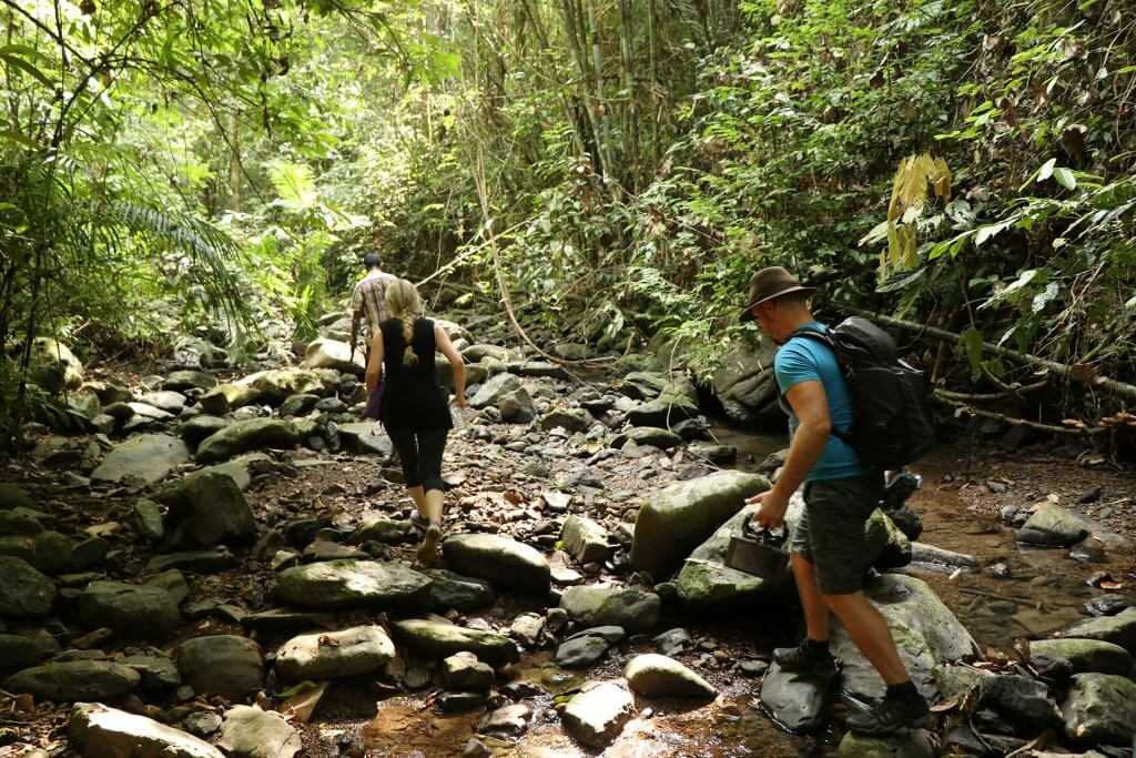 Responsible Hiking in Khao Sok National Park