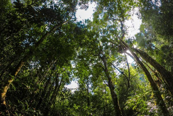 Responsible Hiking in Khao Sok National Park 2