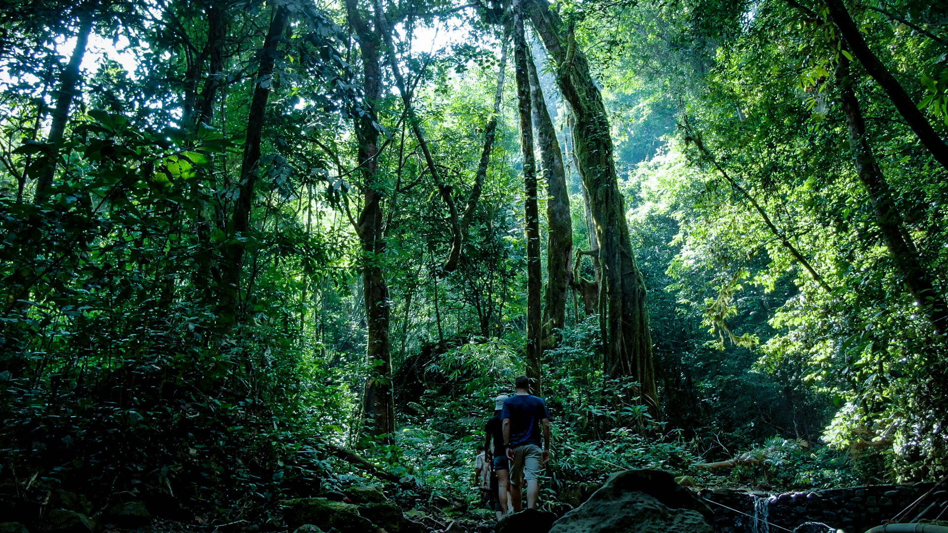 Packing List for 3-days 2-nights in Khao Sok National Park