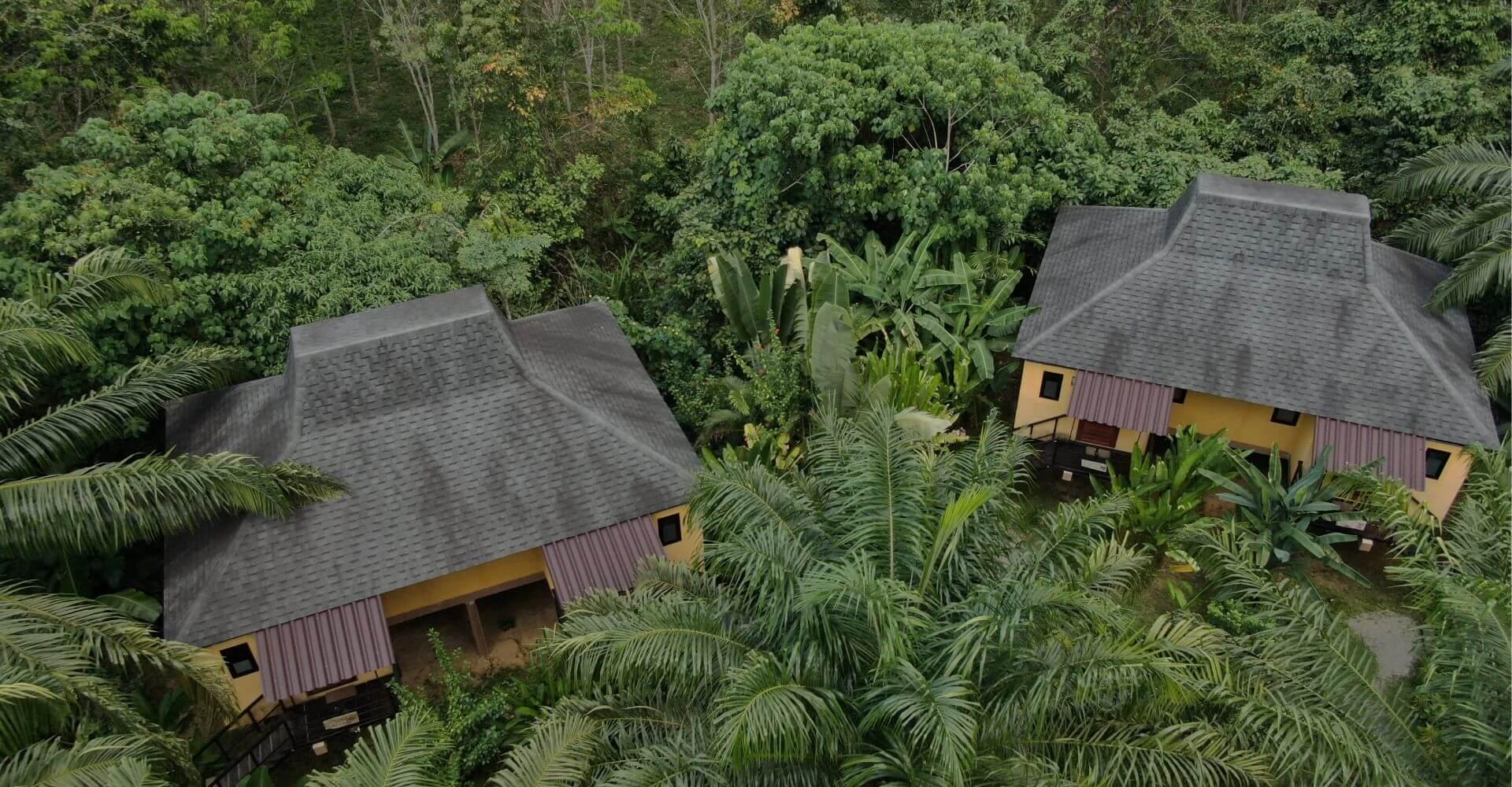 Ecotourism: Anurak Lodge in Thailand Announces 'Rainforest Rising' Campaign
